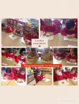 P1 Palaeontologists